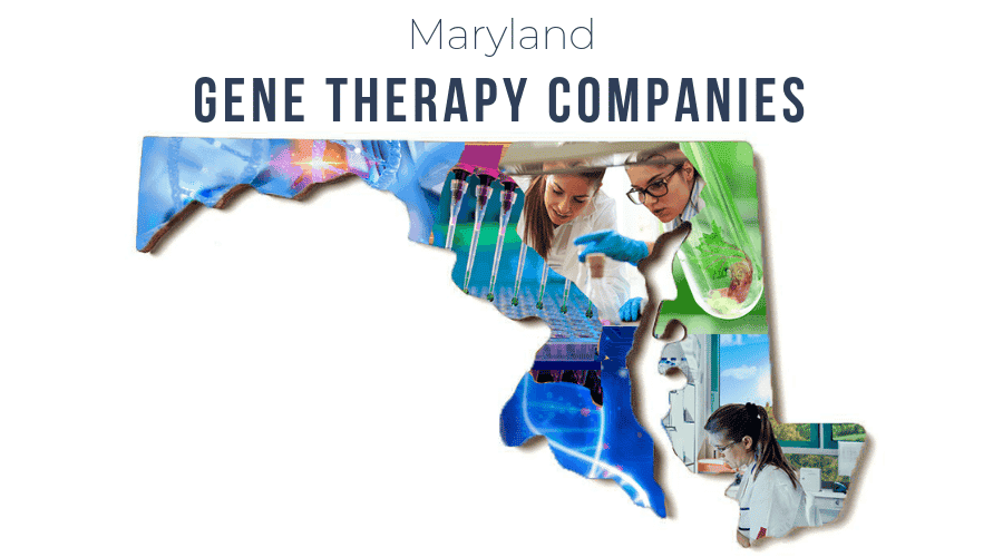 Gene Therapy Companies in Maryland