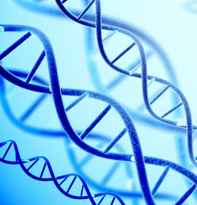 genes-2