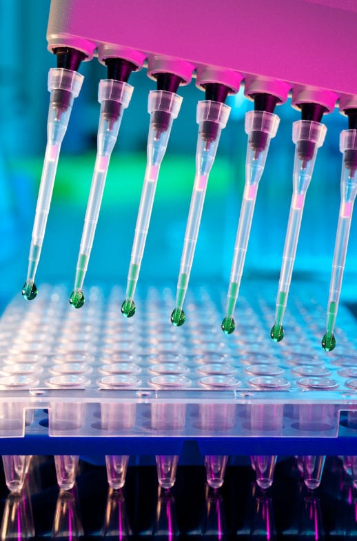 maryland-stem-cell-research