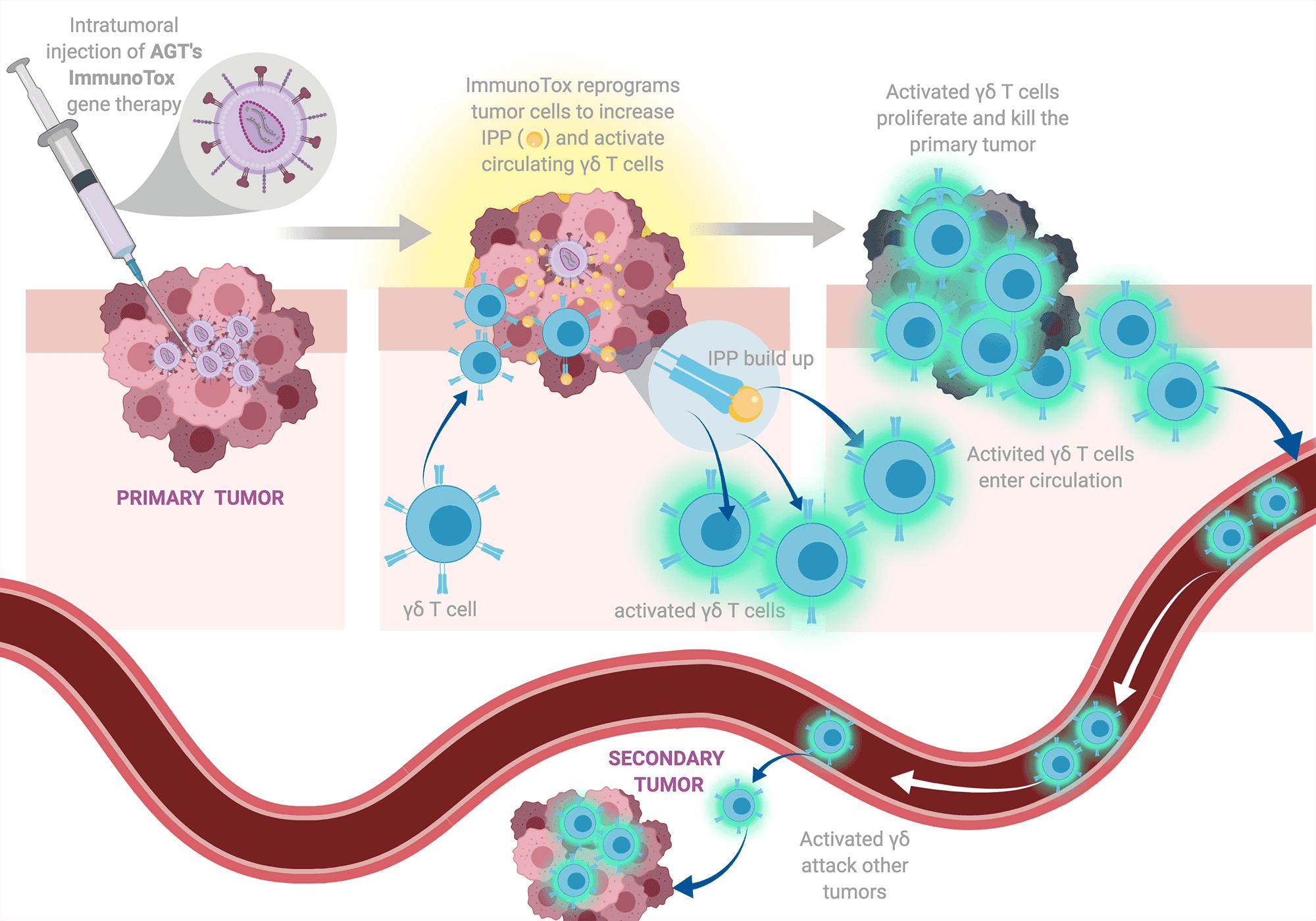 American-Gene-Technologies-Liver-Cancer-Tumor-Cell-Metastasis